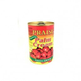 SAUCE GRAINE PRAISE PALM CREAM